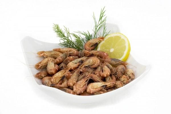 Nordsee-Krabben in Schale, gekocht (nur Donnerstags lieferbar)