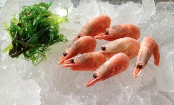 Groenland Krabben mit Schale gekocht